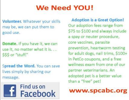 SPCA Infographic We Need You