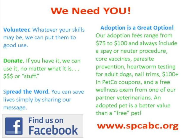 SPCA Infographic We Need You