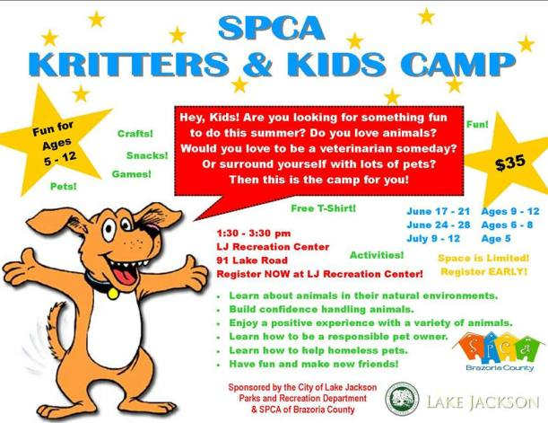 Kritters & Kids Camp Flyer 2013