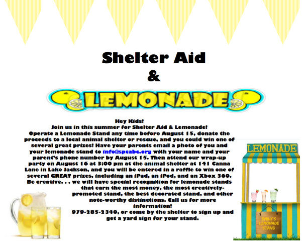 Shelter Aid and Lemonade 2014